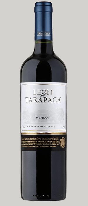Vang Chile Leon De Tarapaca Red – White 2