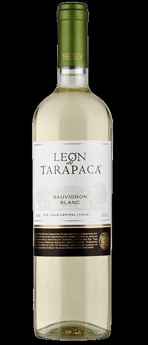 Vang Chile Leon De Tarapaca Red – White 4