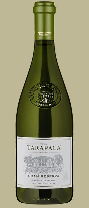 Vang Chile Tarapaca Gran Reserva Red – White 4