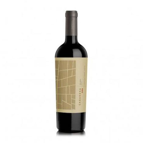 Rượu Vang Casarena DNA Malbec