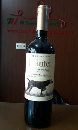 Kết quả hình ảnh cho undurraga pointer gran reserva cabernet sauvignon